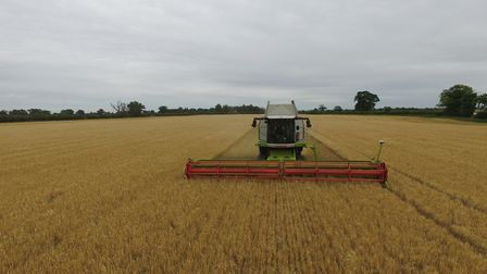 The start of barley harvest 2020 on the Euston Estate Picture: PETE MATSELL