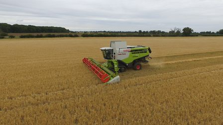 Barley harvest on the Euston Estate begins - but it was cut short by rain Picture: PETE MATSELL