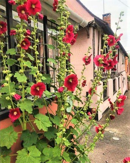 Chris Osburn is one of many thousands of people to tag Lavenham on his Instagram page and said of th