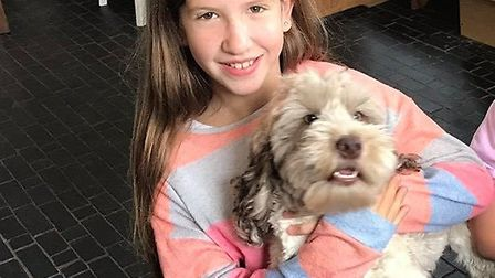 Melissa Murfet and Darren Neal's daughter Evie, 11, with the cockerpoo Betsy who was among the canin