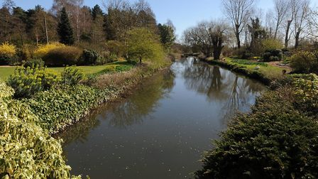Fullers Mill Gardens in West Stow Picture: PHIL MORLEY