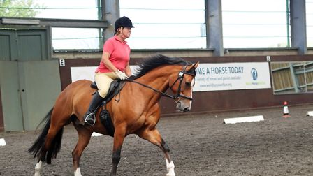 The AHT researched and monitored equine diseases. Picture: AHT