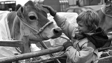The South Suffolk Show in May 1992 Picture: ARCHANT