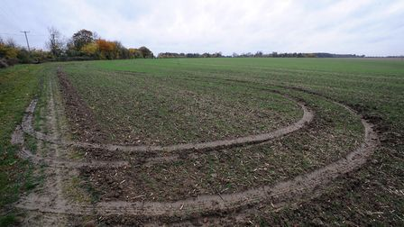 Damaged caused by hare coursers Picture: ARCHANT