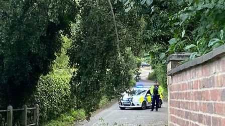 Police are at the scene of a tree which has fallen on a power line in Mill Hill, Capel St Mary. Pict