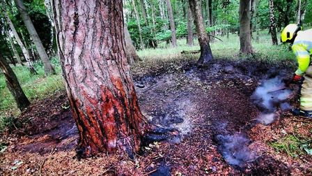 Firefighters tackled a blaze in woodland undergrowth in Brandon. Picture: SUFFOLK FIRE AND RESCUE