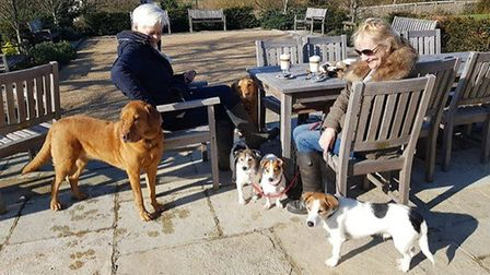 Pets and their owners at the Turks Head pub in Hasketon Picture: THE TURKS HEAD