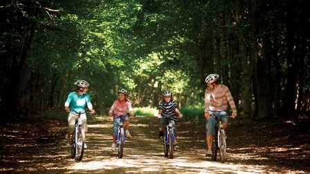 Cyclists are a common sight at Center Parcs' resorts Picture: CENTER PARCS