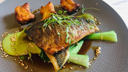 Review, The Fox and Goose Fressingfield - Fillet of sea bream with coconut, lemongrass and pea puree