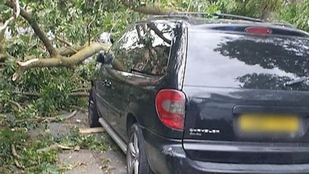 A tree fell on Burwell Road in Exning, blocking the route and causing damage to a car. Picture: IAN