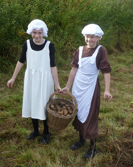 Youngsters potato picking at Gressehhall Farm and Workhouse. Image: Norfolk Museums Service