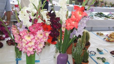 Displays of flowers at previous Dereham gardeners' show. Photo: DDAGS