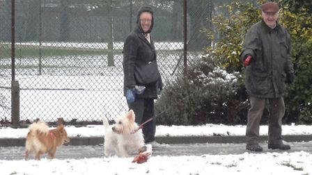 Making friends in the snow in Dagenham Central Park