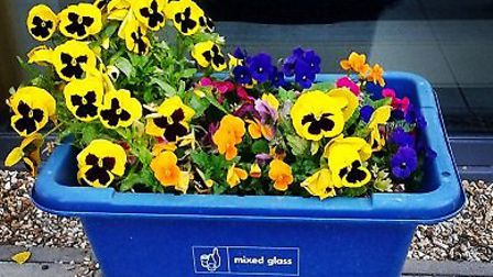 A blue box being used as a planter