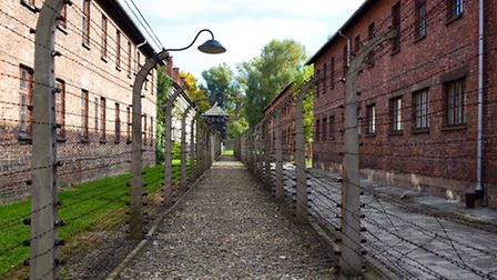 The electrified wire fence at Auschwitz One