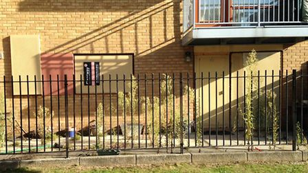 Stephen Port's boarded-up home in Cooke Street, Barking