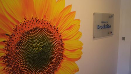 Artwork at the Brookside Adolescent mental health unit in Goodmayes