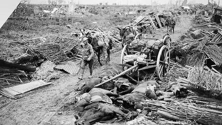 Battle of Pilckem Ridge (opening attack of the Battle of Passchendaele). Pack mules passing a wrecke