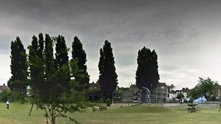 The woman was attacked in Pondfield Park last night. Pic: Google.
