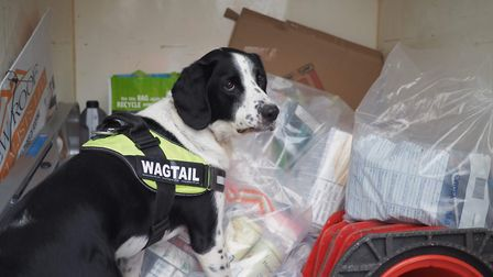 The Barking and Dagenham Trading Standards Team carries out inspections of businesses to make sure t
