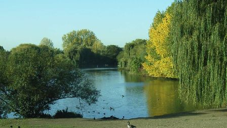 Mayesbrook Park will see 500 trees planted this winter as part of 40,000 being planted in London thr