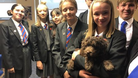 Labradoodle Max is now helping young people across the school. Picture: All Saints Catholic School