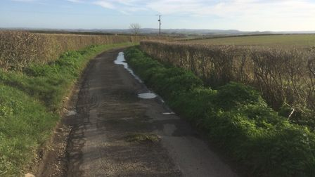 A quiet country lane in Somerset