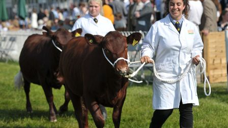 The Grand Parade wowing the crowds at the Suffolk Show Picture: SARAH LUCY BROWN