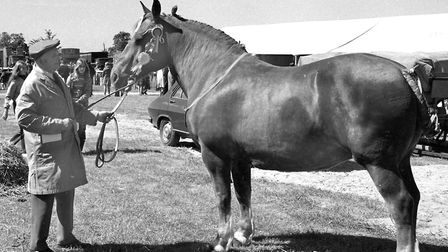 A prize-winning entry at the Suffolk Show in 1974 Picture: ARCHANT