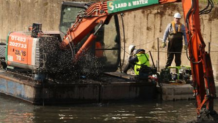Engineers... setting up home for canal birds