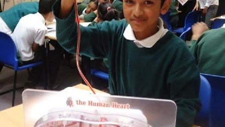 Learning how the heart works... Shakil Ahmed, 11, and his classmates from Bigland Green Primary