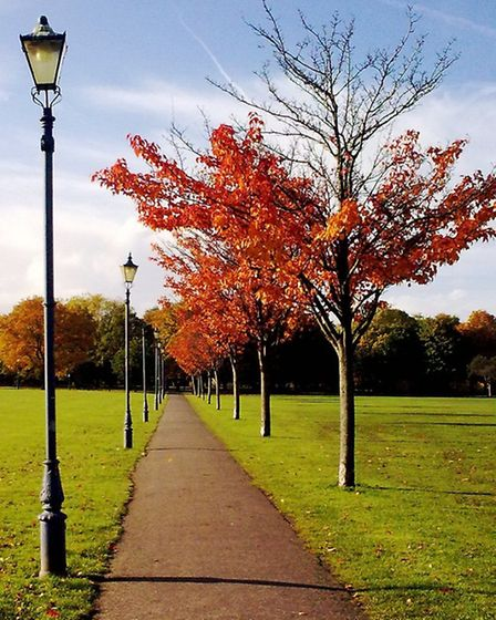 Victoria Park boasts beautiful views all year round