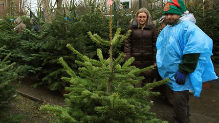 You can recycle Christmas trees