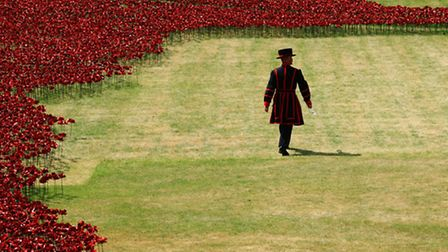 The Tower of London marks the 100 year anniversary of the First World War with a new installation, '
