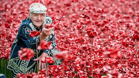 Pearly King in a field of poppies at The Tower