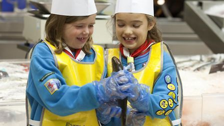 On the supermarket's 'Farm to Fork' educational trail finding out origins of fresh produce