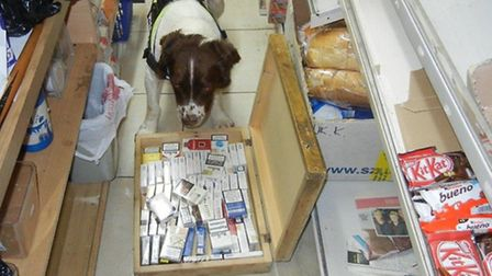 Just an East End corner shop... but Bradley the Wagtail sniffer dog finds more than just groceries