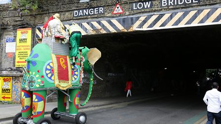It looked like the elephant in the parade wouldn't make it... don't worry, the sahib riding it lower
