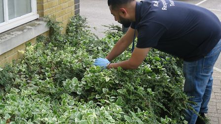 Tower Hamlets Council staff join police searching Bethnal Green housing estate where discarded nitro