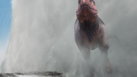 Bath time for Tyrannosaurus at the local public geyser. Picture: Dinosaurs in the Wild