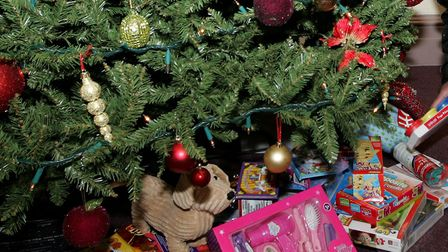 Police have issued Christmas safety advice File photo: Paul Bennett