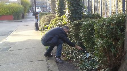 Officer searches for weapons that could be hidden in bushes on Mile End's Bancroft Estate. Picture s