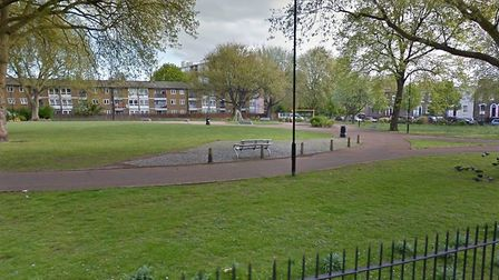Both women were sexually assaulted in Brickfield Gardens. Picture credit: Google.