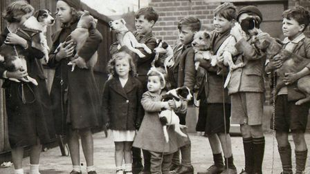Children queue with their pet dogs at a PDSA clinic in the 1950s. Picture source: PDSA
