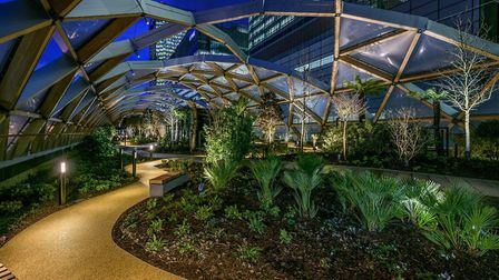 Crossrail Place roof garden opens to the public this weekend with its exotic plants from eastern and