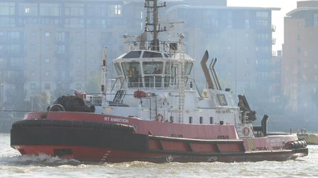 Tug boat used to tow cruise-liners into port on the busy Thames. Picture: Ralph Hardwick
