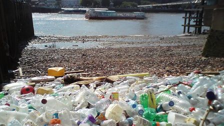 Annual Thames clean up with washed up plastic bottles at the Isle of Dogs. Picture source: Thames 21