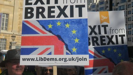 2017 rally at Westminster that attracted tens-of-thousands of demonstrators calling for Brexit to be