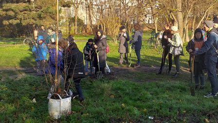 First of the new saplings... improving the woodland trail next to the Regent's Canal. Picture: LBTH