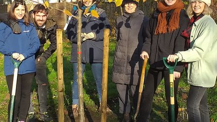 A job well done... enthusiastic volunteers who planted new trees to help parkland biodiversity in th